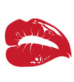 Red lips. On the white background Royalty Free Stock Photo