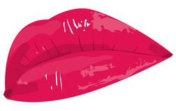 Red Lips. Closeup of red lips, focus on the lips Royalty Free Stock Images