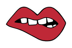 Red lips biting. With teeth, mouth vector illustration doodle cartoon drawing Royalty Free Stock Photography