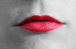 Red lips close-up Stock Image