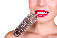 Red lips and a feather. Sensual red lips holding a feather between her teeth Stock Photography