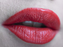 Red Lips with glamourous makeup Stock Photography