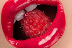 Red lips with raspberry. Stock Photo