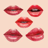 Red lips set. Red sensual juicy lips collection. Mouth set. Vector lipstick or lip gloss 3d realistic illustration Stock Images