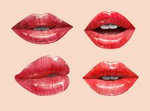 Red lips set. Red sensual juicy lips collection. Mouth set. Vector lipstick or lip gloss 3d realistic illustration Stock Photography