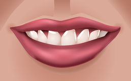 Red lips. Woman's big red smiling lips - illustration Stock Photos