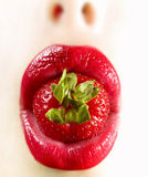 Red lips3. Red lips of a woman with a strawberrie Stock Photos