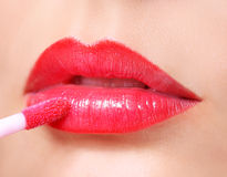 Red Lipstick. Lip Gloss on Lips and Brush. Stock Photography