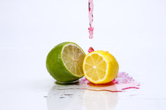 Red liquid on lemon and lime. Stock Image