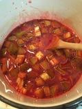 Rhubarb sauce royalty free stock photo