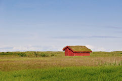 Red little house with grass on the roof Stock Photography