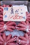 Red live octopus at Tsukiji fish market, Tokyo, Japan Stock Image