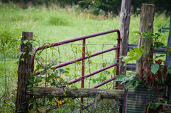 Red livestock gate Royalty Free Stock Photo