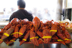Red lobster. At Pier 39, San Francisco Stock Image