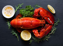 Free Red Lobster Stock Photo - 89339940