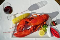 Red Lobster Dinner with Wine Royalty Free Stock Photography