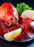 Red lobster Royalty Free Stock Images