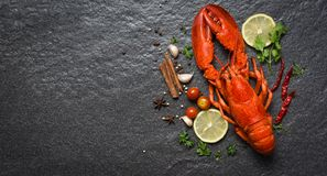 Red lobster seafood with lemon herbs and spices dark backgroud top view copy space. Red lobster seafood with lemon herbs and spices on dark backgroud top view stock image