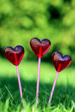 Red lollipops in heart shape Royalty Free Stock Photo