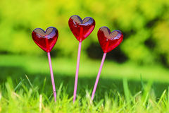 Red lollipops in heart shape Stock Images