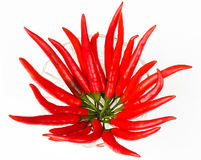 Red long Chili in a small glass bowl. Isolated Stock Images