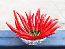 Red long Chili in a small glass bowl. On the steel door Stock Images
