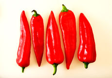 Red long Peppers Stock Images