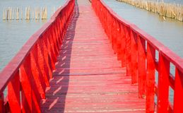 Red long timber boardwalk is tourist attraction alongside a waterfront near coastal line in Samut Prakan, Thailand. A beautiful Red long timber boardwalk is royalty free stock images