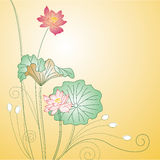 Red lotus Stock Photography