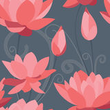 Red lotus seamless background Stock Photos