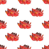 Red lotus. Seamless pattern with cosmic or galaxy royalty free illustration