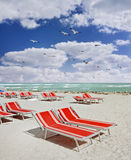 Red lounge chairs on a tropical beach Stock Images