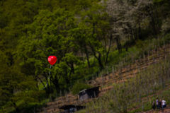 Red Love Balloon Heart Shaped Floating Alone Outdoors Royalty Free Stock Images