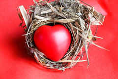 Red Love hart in bird nest. Straw leaf on red background stock image