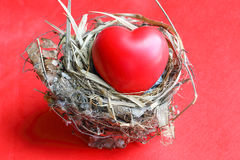 Red Love hart in bird nest. Straw leaf on red background royalty free stock photo