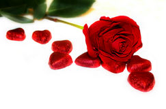Red Love Valentine`s Background Stock Image