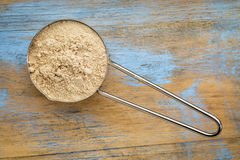 Red maca root powder Royalty Free Stock Photo