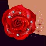 Red macro rose with diamonds Royalty Free Stock Photos