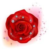 Red macro rose with diamonds Stock Image