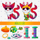 Red magic cat with toys and clothing Stock Photos