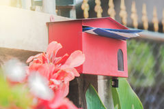 Red Mail Box. In Front of a House Stock Photography