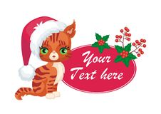 Red Maine coon kitten Stock Image