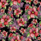 Red malva flowers with green buds and leaves on black background. Seamless floral pattern. Watercolor painting. Red malva flowers with green buds and leaves on Royalty Free Stock Photo
