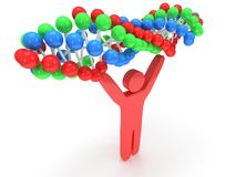 Red man with DNA chain. 3D. Royalty Free Stock Photography