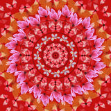 Red mandala Royalty Free Stock Photos