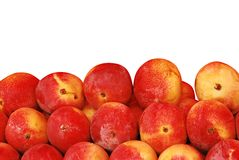 Red Mangoes Royalty Free Stock Photography