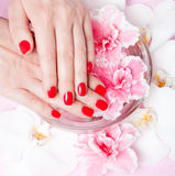 Red manicure with flowers Royalty Free Stock Photos