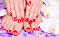 Red manicure and pedicure Stock Photo