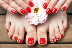 Red manicure and pedicure with flower close-up, on a wooden background, top view.  stock photos