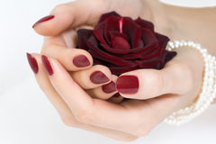 Red manicure and rose royalty free stock photography